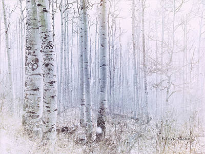 Photograph - Love Amidst The Aspens by Kevyn Bashore