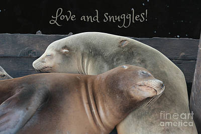 Photograph - Love And Snuggles by Carol Groenen