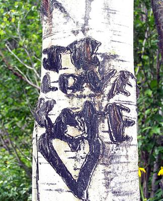 Photograph - Love Aspen by Pamela Walrath