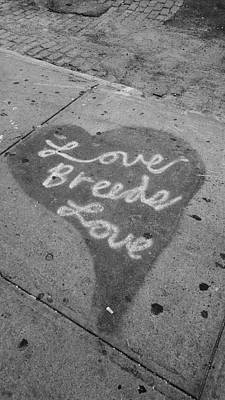 Photograph - Love Breeds Love B W by Rob Hans