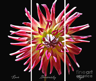 Art Print featuring the photograph Love Generosity Hope by Diane E Berry