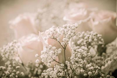 Photograph - Love In Barely Pink by Joni Eskridge
