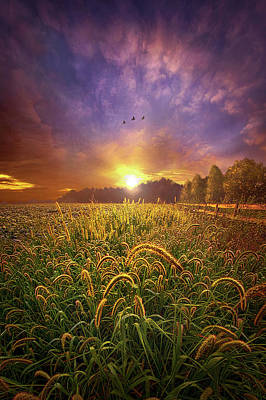 Photograph - Love Is Knowing We Shall Be Free by Phil Koch