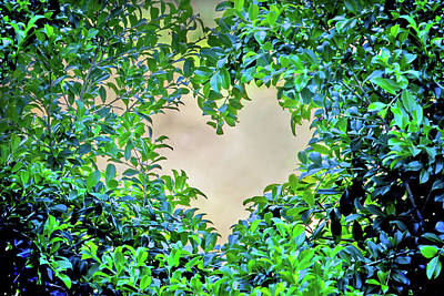 Heart Images Photograph - Love Leaves by Az Jackson
