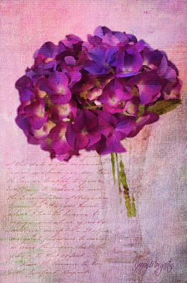 Photograph - Love Letter by Nancy Morgantini