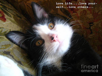 Photograph - Love Life by Reb Frost