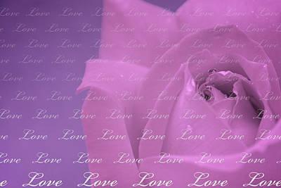 Photograph - Love  by Lisa Knechtel