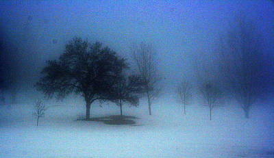 Photograph - Love Me In The Mist by Julie Lueders