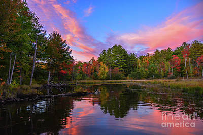 Photograph - Love New Hampshire by Mim White