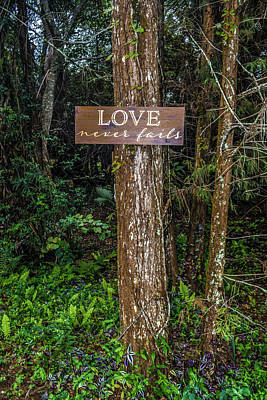 Photograph - Love On A Tree by Josy Cue