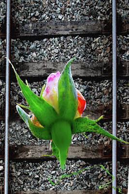 Digital Art - Love On The Tracks - Derailed - Rose by Marie Jamieson