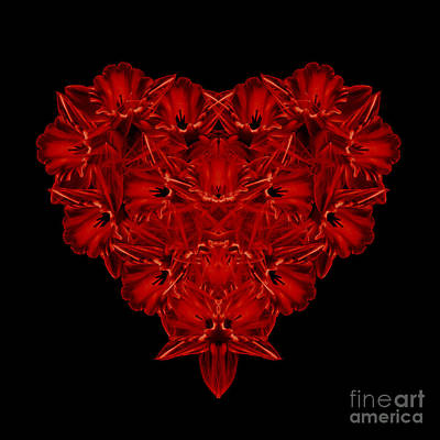 Pedals Photograph - Love Red Floral Heart by Edward Fielding