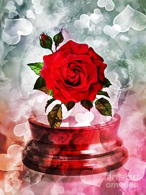 Photograph - Love Rose by Maria Urso