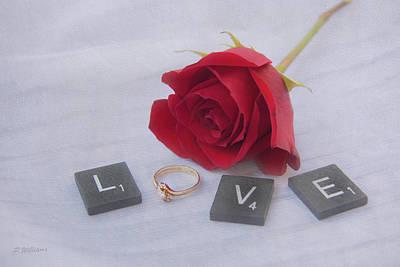 Photograph - Love Rose by Pamela Williams