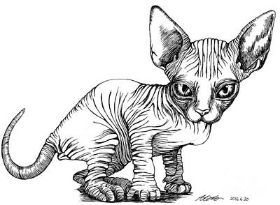 Drawing - Love Sphynx by Akiko Okabe