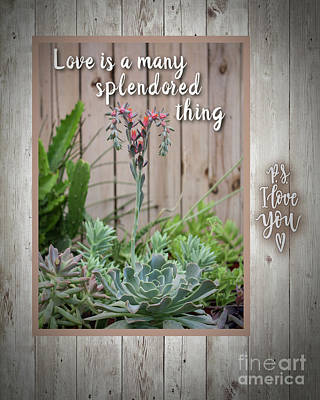 Digital Art - Love Splendored Thing by Mary Bellew