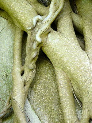 Love Tendril Original by Donna McLarty
