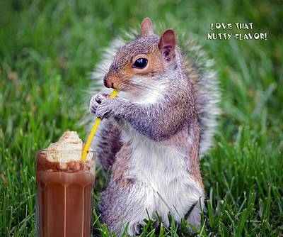 Photograph - Love That Nutty Flavor by Brian Wallace