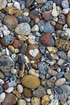 Beachcombing Photograph - Love The Beach by Tim Gainey