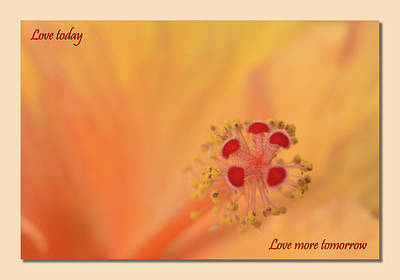 Digital Art - Love Today 01 by Kevin Chippindall