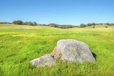 Photograph - Love Valley - Buttercup Meadow by Alexander Kunz