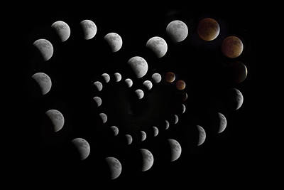 Eclipse Photograph - Love You To The Moon And Back II by Betsy Knapp