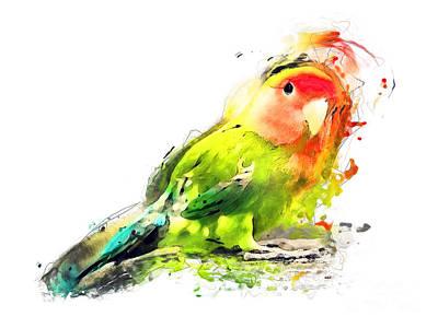 Lovebird Painting - Lovebird Watercolor Painting by Justyna JBJart
