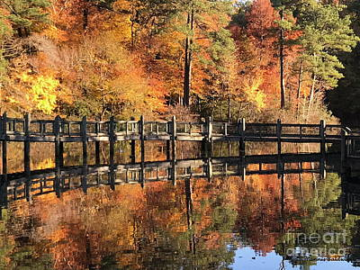 Photograph - Lovely Autumn Day by Tannis Baldwin