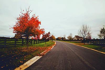 Photograph - Lovely Autumn Drive by Aidan Meyer