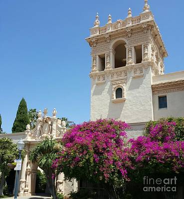 Photograph - Lovely Blooming Day In Balboa Park San Diego by Jasna Gopic