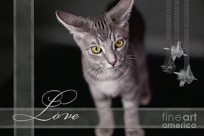 Photograph - Lovely Face Card by Afrodita Ellerman