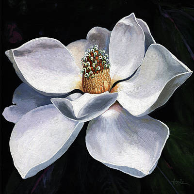 Lovely In White - Painting Magnolia Flower  Art Print by Linda Apple