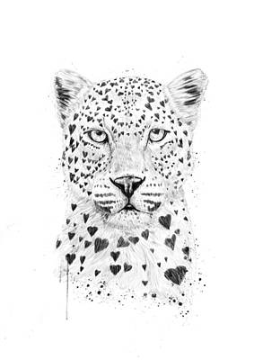 Black And White Wall Art - Drawing - Lovely Leopard by Balazs Solti