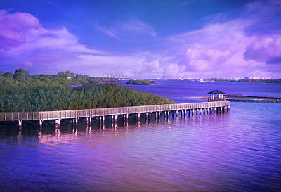 Photograph - Lovely Light On The Intracoastal Waterway by Lynn Bauer