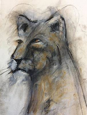Charcoal Mixed Media - Lovely Lioness by Suzy Norris