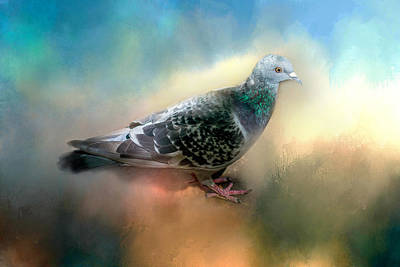 Pigeons Digital Art - Lovely Pigeon by Terry Davis