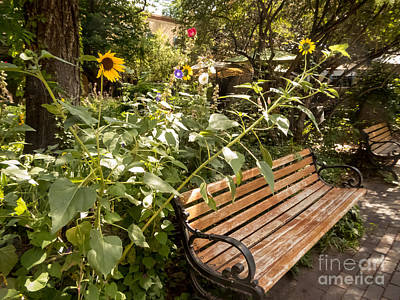 Photograph - Lovely Place To Relax by Bob and Nancy Kendrick