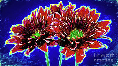 Photograph - Lovely Pompon 18-30 by Ray Shrewsberry