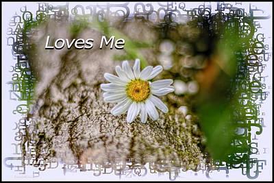 Photograph - Loves Me Daisy by LeeAnn McLaneGoetz McLaneGoetzStudioLLCcom