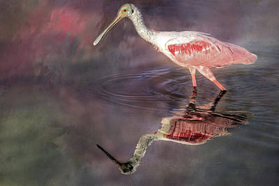 Spoonbill Wall Art - Photograph - Lovin' Spoonful by Donna Kennedy