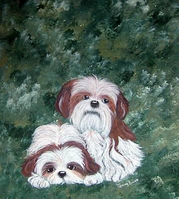 Loving Shih Tzu Art Print by Tammy Brown