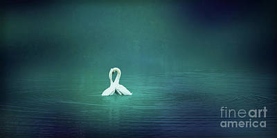 Digital Art - Loving Swans by Liz Alderdice