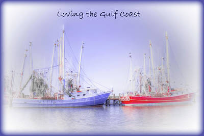 Photograph - Loving The Gulf Coast by Barry Jones