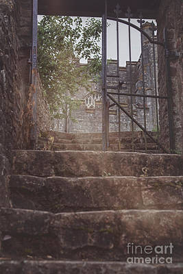 Photograph - Low Angle Shot Towards Stone Steps by Patricia Hofmeester