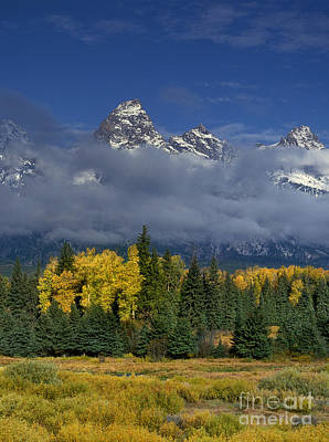 Photograph - Low Clouds Fall Color Aspens Blacktail Ponds Grand Tetons National Park Wyoming by Dave Welling