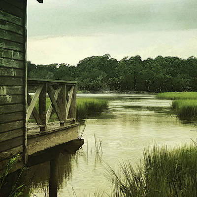 Digital Art - Low Country by Gina Harrison