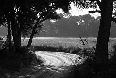 Photograph - Low Country Road by Donnie Whitaker