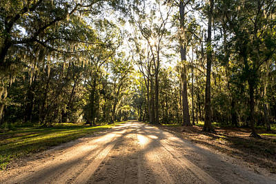Photograph - Low Country Road by Serge Skiba