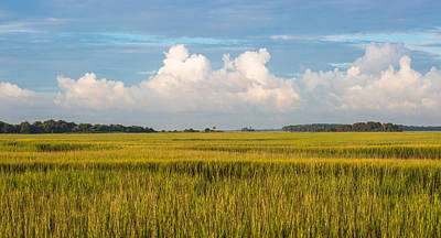 Photograph - Low Country Setting by Donnie Whitaker