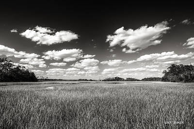 Photograph - Low Country Tones by Walt  Baker